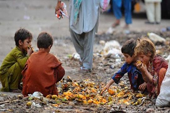 Fighting Food Waste