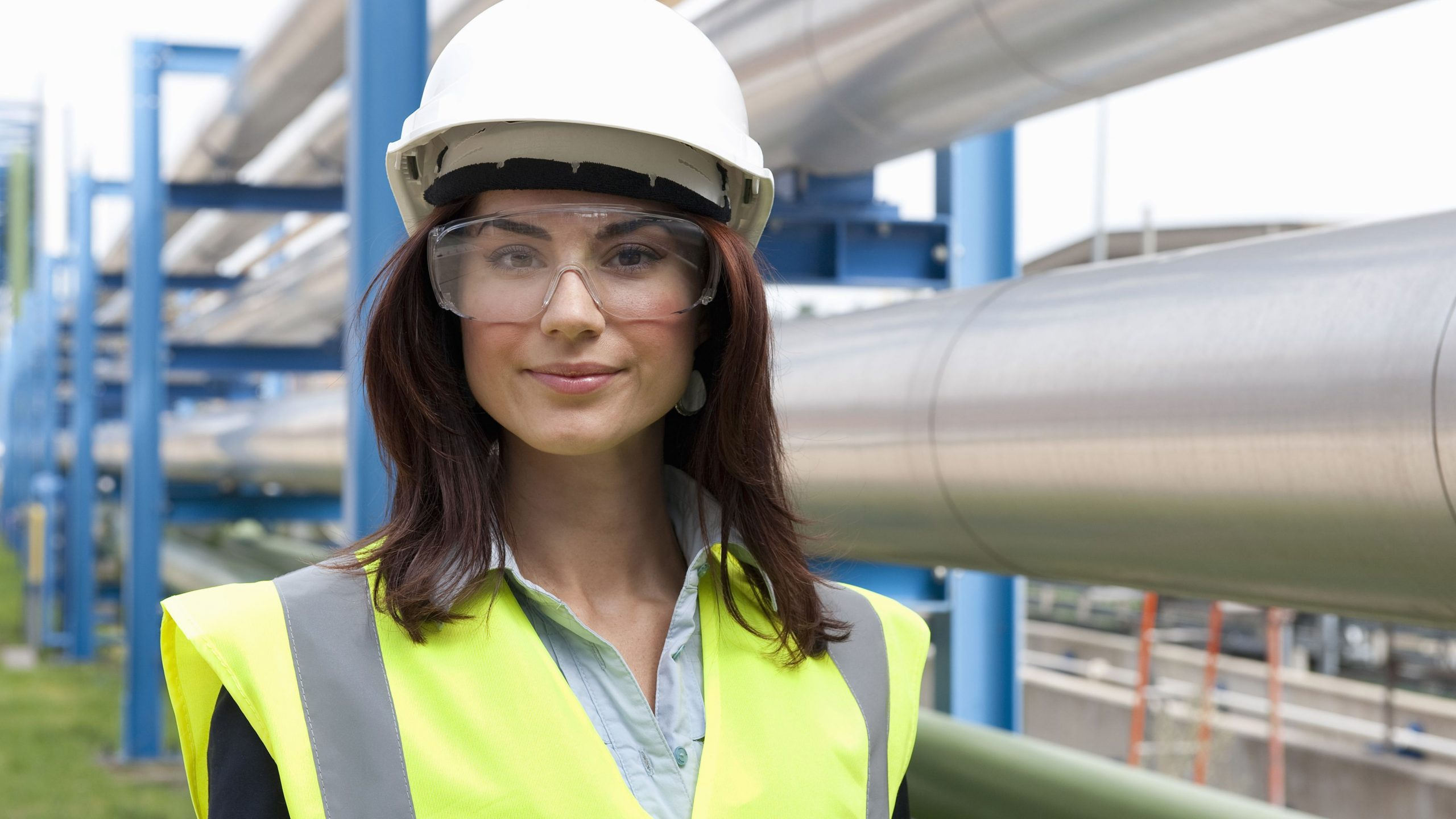 What chemical engineering offer you